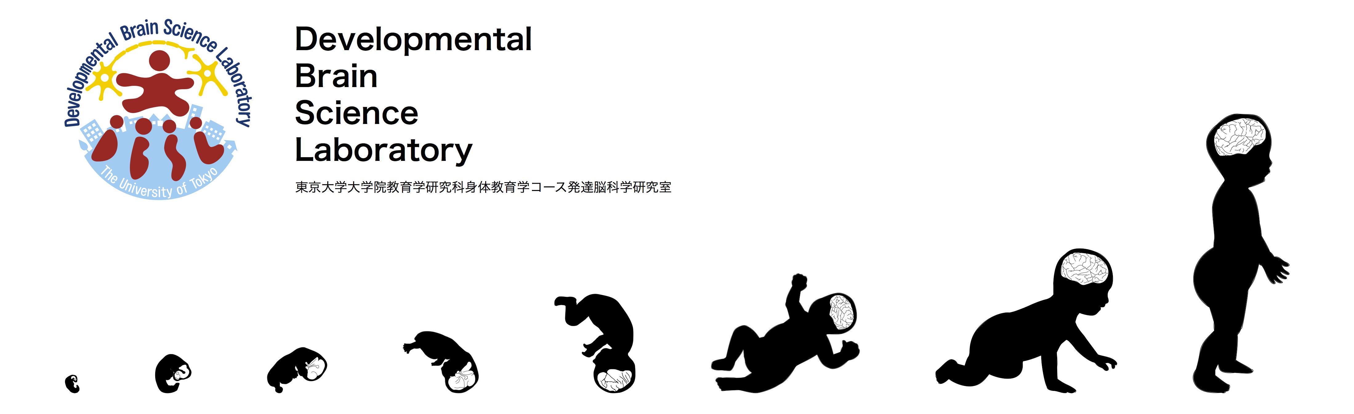 東京大学 大学院教育学研究科 発達脳科学研究室|Developmental Brain Science Laboratory
